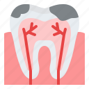 decayed, teeth, cavity, nerve icon