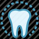 circle, dental, dentist, health, molar, tooth icon