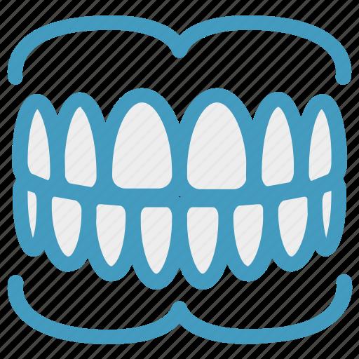 care, dental, dentistry, gums, oral, teeth icon