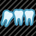 dental, dentist, stomatology, teeth, tooth