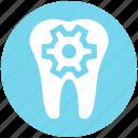 dental, dental care, dentist, gear, service, tooth