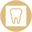 dental, ist, stomatology, teeth, tooth icon