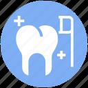 brush, cleaning, dental, dentist, teeth, tooth