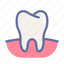 dental, dentist, medical, oral, tooth icon