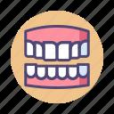 dentures, teeth