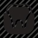 anatomy, dental care, dentist, health, nerve, stomatology, tooth icon