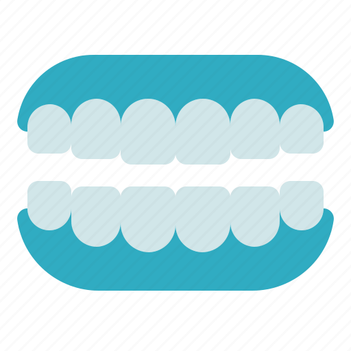 artificial teeth, dental care, dentist, denture, health, orthodontic, tooth icon