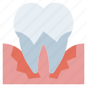 clear, dental, dentist, healthcare, medical, molar, parodontosis, premolar, teeth, tooth icon