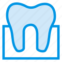 caveat, dentist, filling, health, human, medical, tooth icon