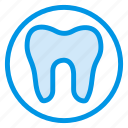 care, decay, dental, dentist, health, medical, tooth icon