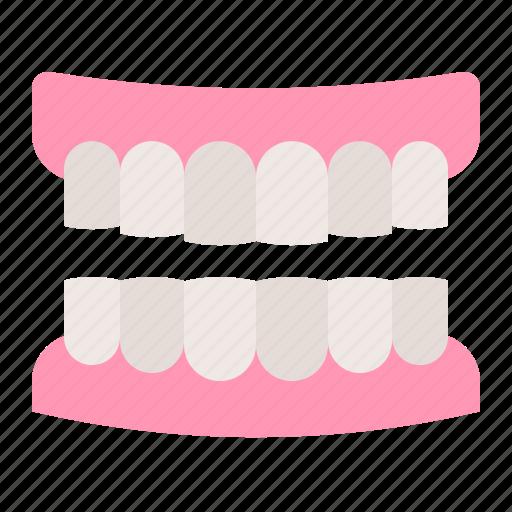 dental, dentist, dentistry, denture, gums, teeth, tooth icon