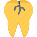 crack, dentist, doctor, medicine, teeth, tooth icon