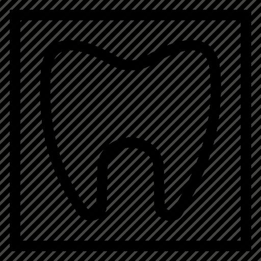 dental, dentist, dentistry, healthcare, human, medical, teeth icon