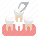 dental, dentist, dentistry, extraction icon
