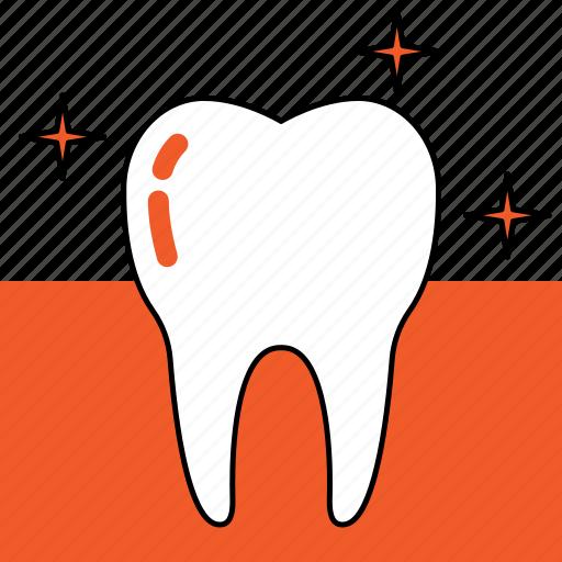 dentist, dentistry, healthy, orthodontics, teeth, tooth icon