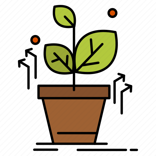 Grow, grown, plant, success icon - Download on Iconfinder