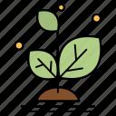 grow, growth, plant, success icon