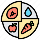 plan, eating, healthy, portions, meal icon