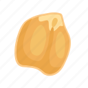 bean, chickpeas, food, grain, leguminous, peas, seed icon