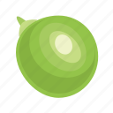 bean, food, grain, green, leguminous, peas, seed icon