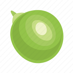 bean, food, grain, green, leguminous, peas, seed icon