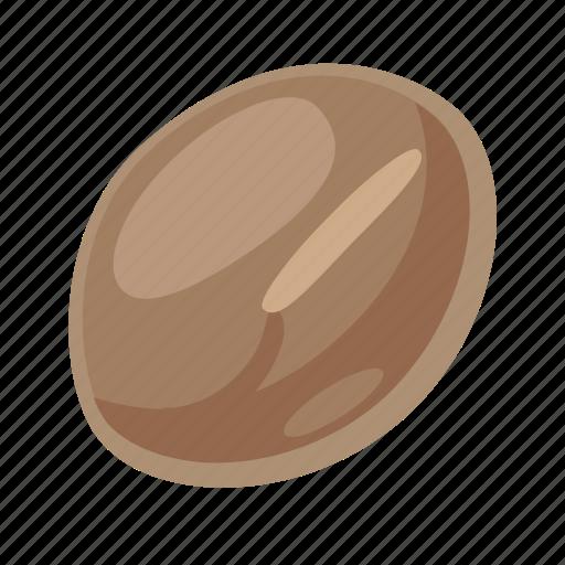 bean, food, grain, leguminous, peas, seed, vetch icon