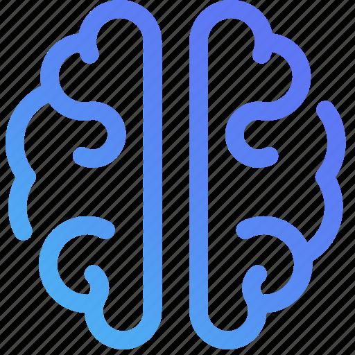 brain, creativity, design, graphic, idea, marketing, thinking icon