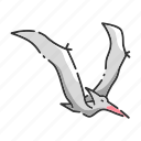animal, bird, dinosaur, pteranodon, pterosaurs