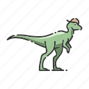 animal, dinosaur, pachycephalosaurus icon