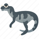 carnivore, ceratosaurus, dinosaur, jurassic, theropod