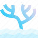 aquarium, aquatic, coral, marine, nature, sea life, underwater icon