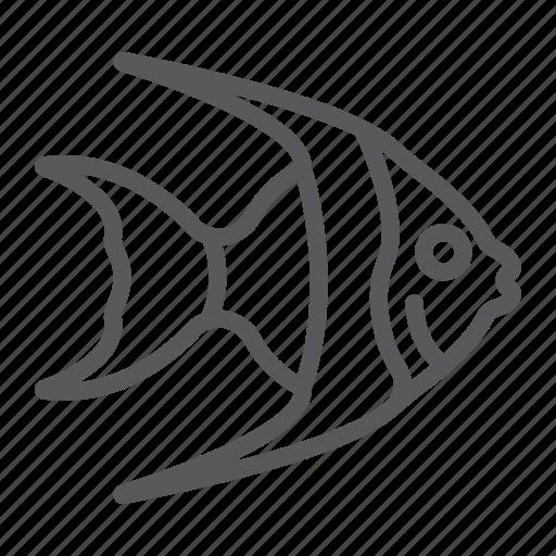 animal, aquatic, fish, ocean, sea, tropical, underwater icon
