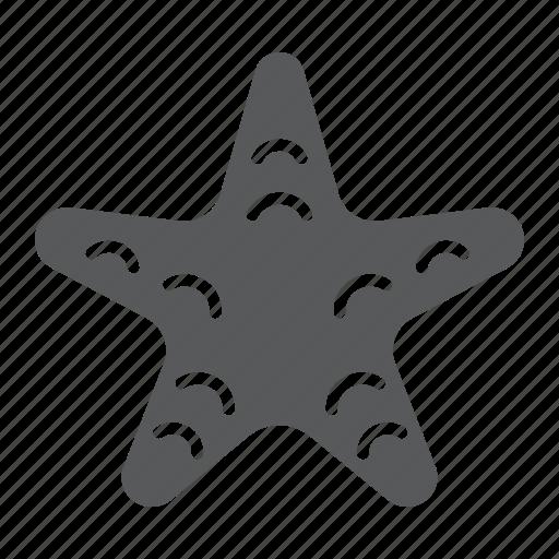 animal, aquatic, sea, star, starfish, tropical, underwater icon