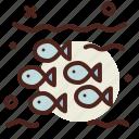 bankunderwater, fish, ocean, scuba, sea