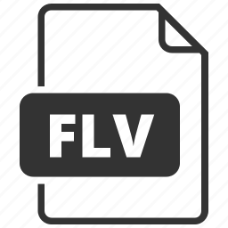 file format, flash, flv, video icon