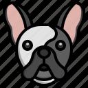 french, bulldog, dogs, dog, pets, animals