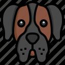 great, dane, dogs, dog, pets, animals