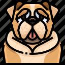 animal, animals, avatar, bull, dog, pets, puppy