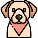 animal, avatar, dog, labrador, pets, puppy, retrievers icon