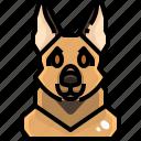 animal, avatar, dog, german, pets, puppy, shepherd icon