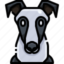 animal, animals, avatar, dog, greyhound, pets, puppy icon