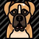 animal, animals, avatar, boxer, dog, pets, puppy icon