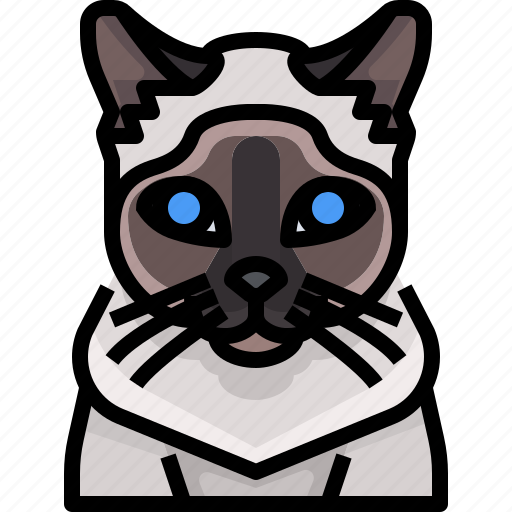 Animal, avatar, cat, kitty, pets, siamese icon - Download on Iconfinder