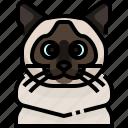 animal, avatar, birman, cat, kitty, pets icon