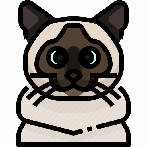 Animal, avatar, birman, cat, kitty, pets icon - Download on Iconfinder