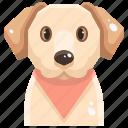 animal, canine, dog, labrador, pets, puppy, retrievers icon
