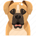 animal, avatar, boxer, canine, dog, pets, puppy