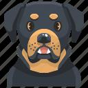 animal, avatar, canine, dog, pets, puppy, rottweiler
