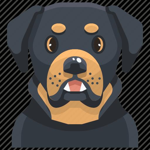 animal, avatar, canine, dog, pets, puppy, rottweiler icon