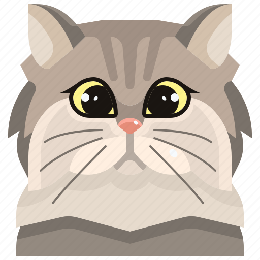 Animal, avatar, cat, kitty, persian, pets icon - Download on Iconfinder